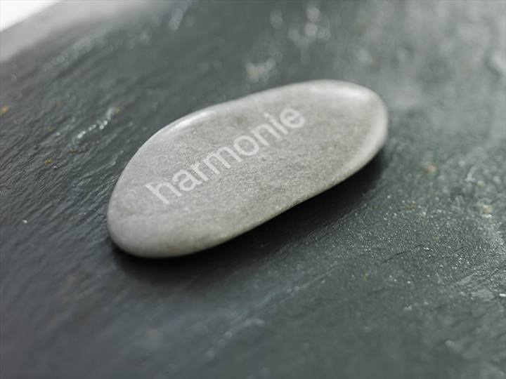 Pensee-positive-Les-lois-de-lharmonie