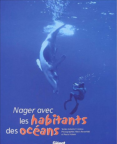 Nager avec les dauphins neo bien tre for Nager avec les dauphins nice