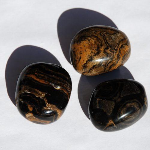 Lithothérapie-Stromatolite