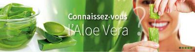 Aloe Vera Christine Le Roux Nantes