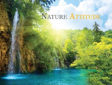 Le Coaching Nature Attitude : qu'est-ce que c'est ?