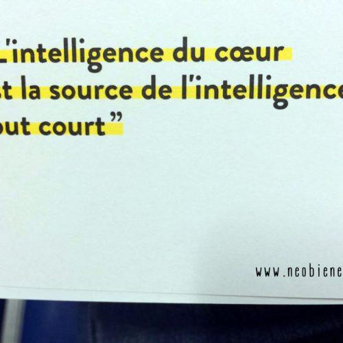 L'intelligence du coeur est la source de l'intelligence tout court