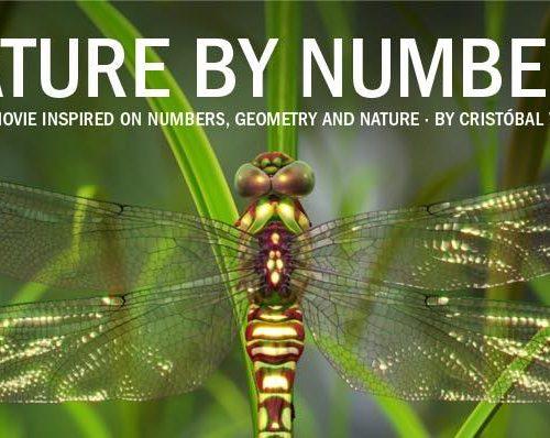 Nature by numbers, la nature par les chiffres