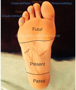 Lecture psycho émotionnelle des pieds – Formation