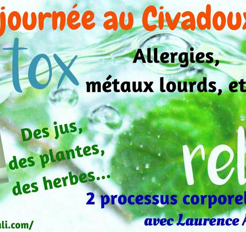 Journée Détox avec Access®