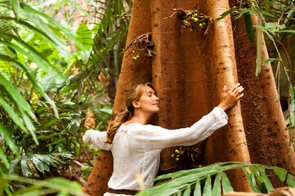 Ressourcez-vous grâce à l'énergie des arbres
