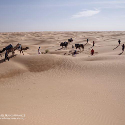 Stage «Contactez le féminin sauvage en soi» dans le désert tunisien