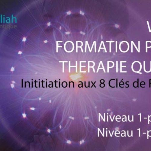 WEBINAIRE FORMATION THÉRAPIE QUANTIQUE Niveau 1