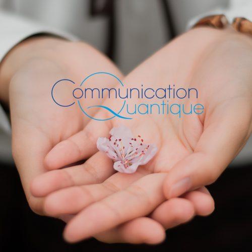 France Paris Séminaire de Communication Quantique®
